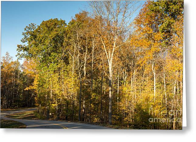 The Long And Winding Road - Natchez Trace Greeting Card by Debra Martz