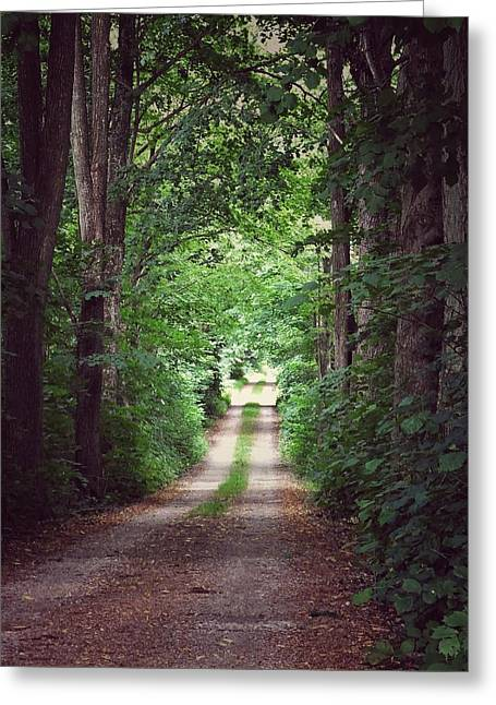 The Long Driveway Greeting Card by Karen Stahlros