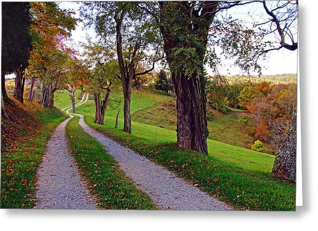 The Long Road In Autumn Greeting Card
