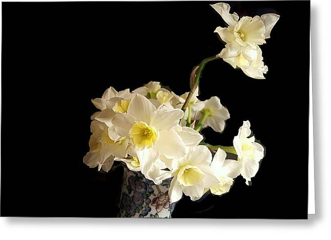 The Lookout Scout Daffodil Greeting Card by ARTography by Pamela Smale Williams