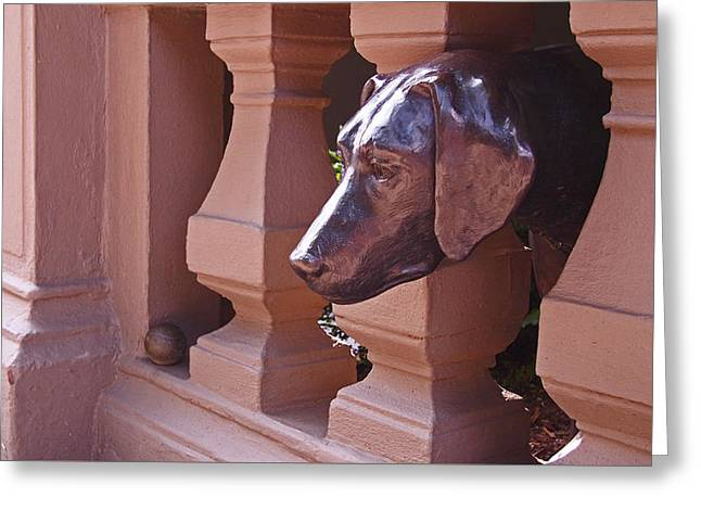 Brown Head Sculpture Greeting Cards - The Lost Ball Greeting Card by Rona Black