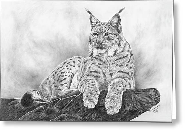 The Lynx 2017 Version Greeting Card