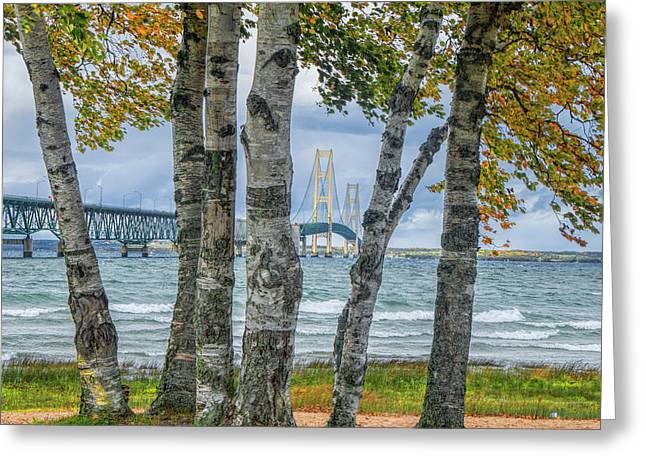 The Mackinaw Bridge By The Straits Of Mackinac In Autumn With Birch Trees Greeting Card