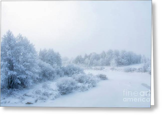The Magic Of Winter 2 Greeting Card