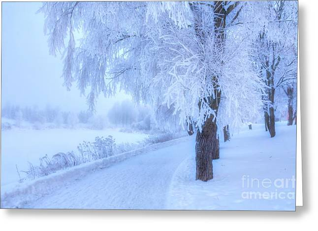 The Magic Of Winter 4 Greeting Card