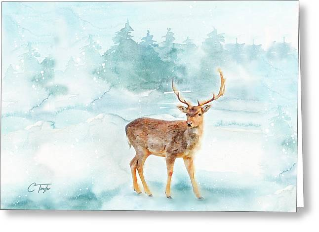 The Magic Of Winter  Greeting Card by Colleen Taylor