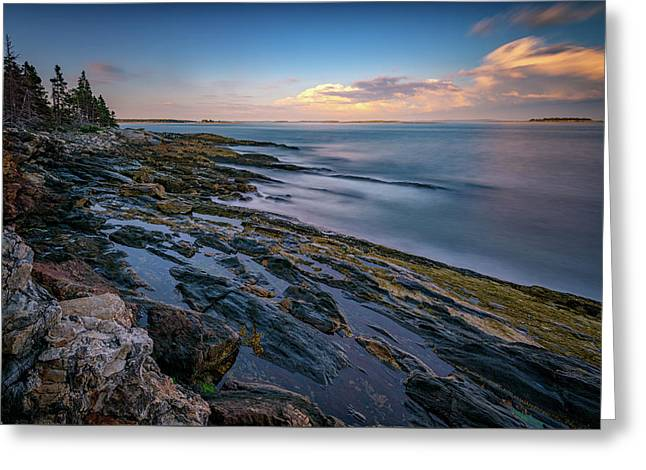 The Maine Coast Greeting Card by Rick Berk
