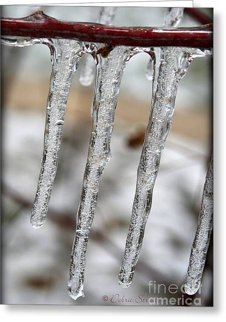 The Makings Of Winter Greeting Card by Debra Straub
