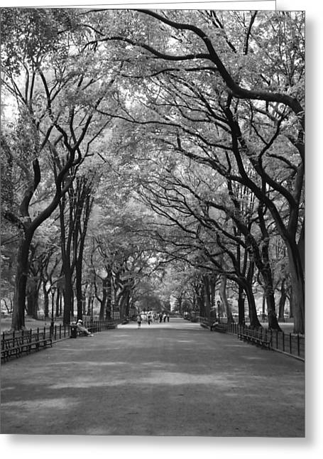 The Mall In Central Park And Poets Walk Greeting Card by Christopher Kirby