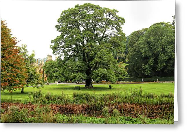 Greeting Card featuring the photograph The Manor Castle Combe by Michael Hope