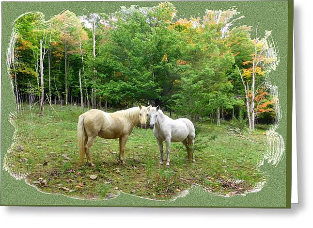 The Mares Watch Greeting Card by Patricia Keller