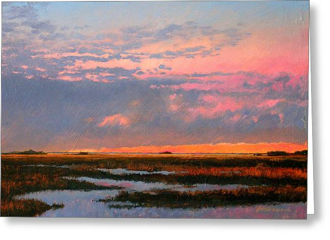 The Marsh  Greeting Card by Gary Gowans