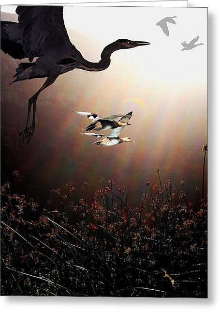 The Marsh Greeting Card by Wingsdomain Art and Photography