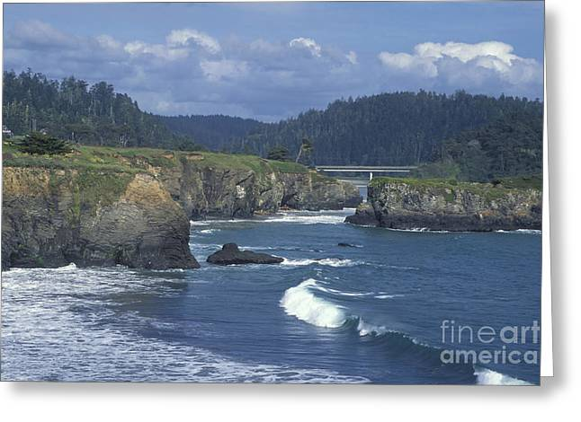 Greeting Card featuring the photograph The Mendocino Coast 2 by Stan and Anne Foster