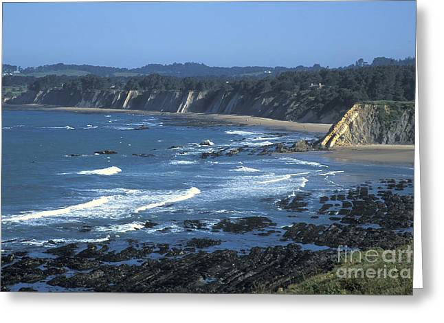 The Mendocino Coast Greeting Card by Stan and Anne Foster