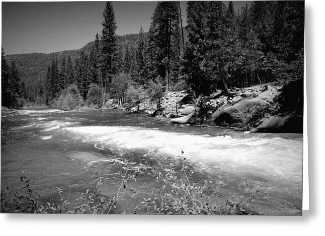 The Merced River At Yosemite Black And White Greeting Card