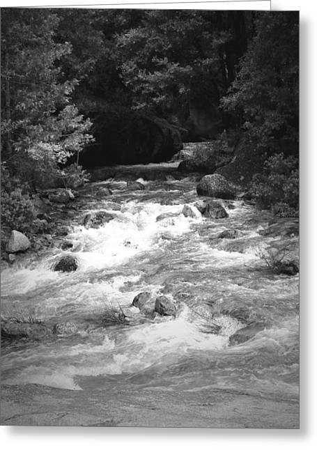 The Merced River At Yosemite Two B And W Greeting Card