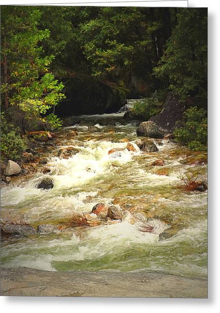 The Merced River In Yosemite Two  Greeting Card