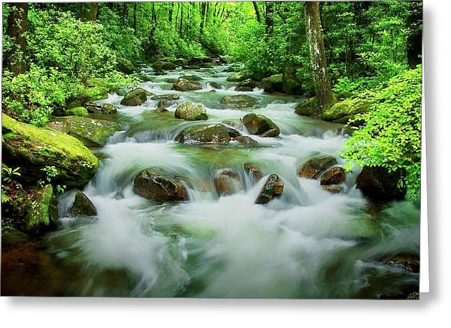 The Middle Saluda River, South Carolina Greeting Card