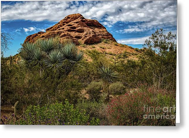 The Mighty Papago Greeting Card