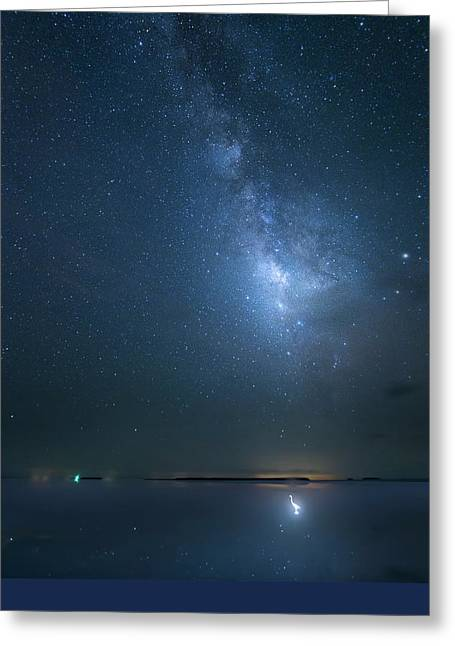 Greeting Card featuring the photograph The Milky Way And The Egret by Mark Andrew Thomas
