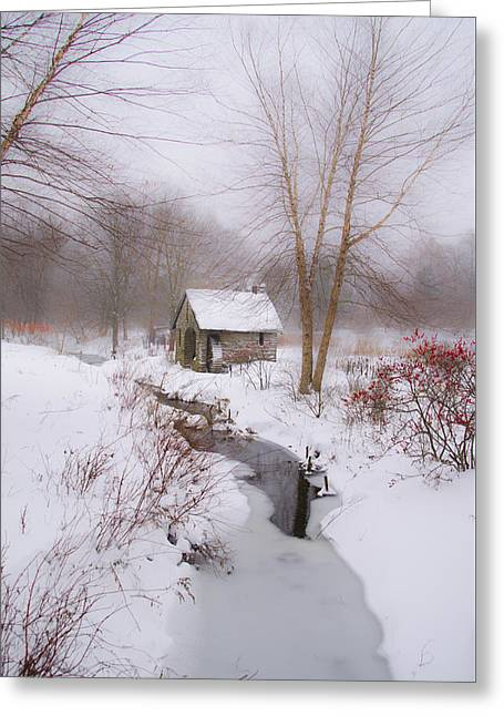 The Mill And Creek At Morris Arboretum Greeting Card