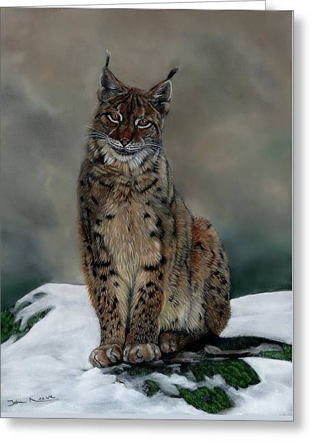 The Missing Lynx Greeting Card