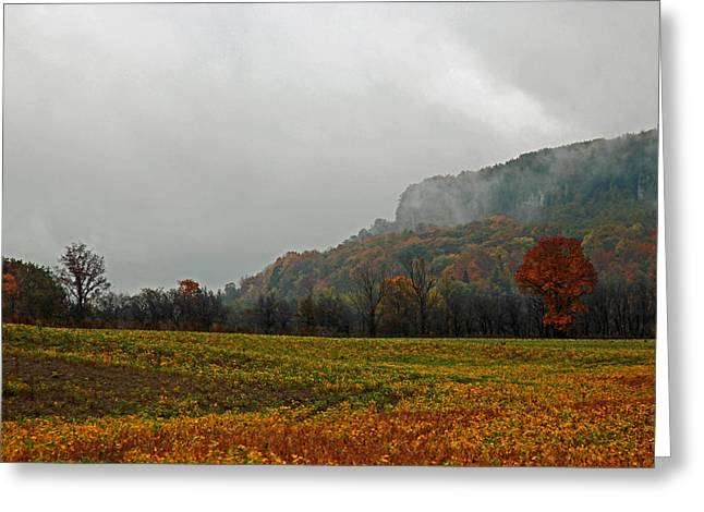 Greeting Card featuring the photograph The Mist by John Stuart Webbstock