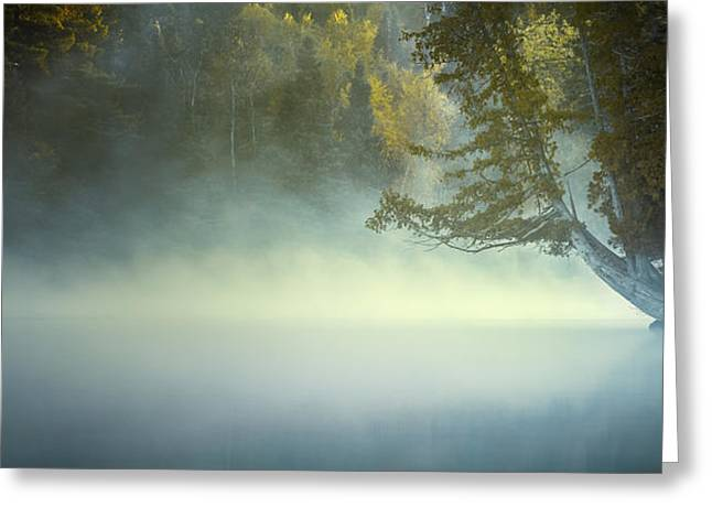 The Mists Of Hunt Lake Greeting Card by Stuart Deacon
