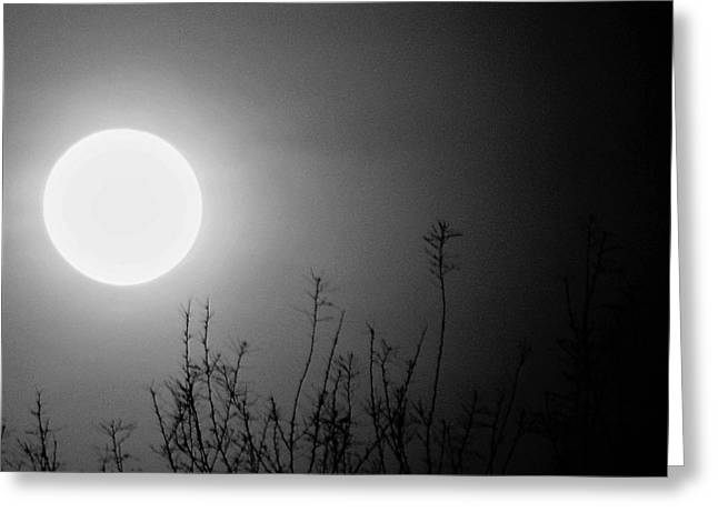The Moon And The Stars Greeting Card by John Glass