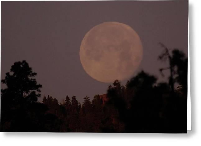 Oak Creek Greeting Cards - The Moon Over Oak Creek  Greeting Card by Jeff  Swan