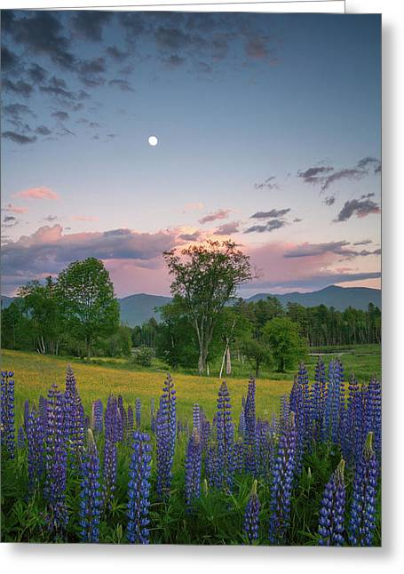 The Moon Rises Above Greeting Card