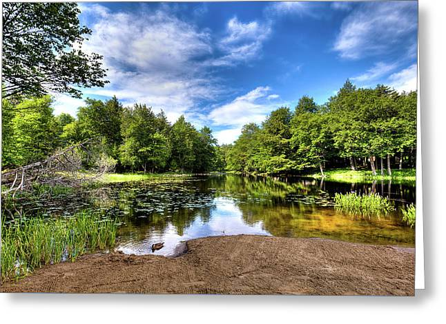 Greeting Card featuring the photograph The Moose River At Covewood by David Patterson