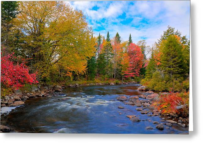 The Moose River On A Beautiful Fall Day Greeting Card by David Patterson