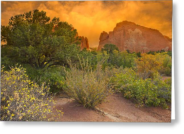 Garden Of The Gods Greeting Cards - The Morning Mood Greeting Card by Tim Reaves
