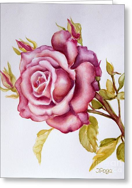 The Morning Rose Greeting Card