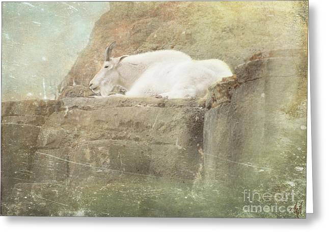 The Mountain Goat Greeting Card