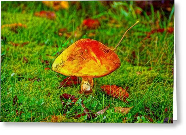 The Mushroom 19 - Pa Greeting Card