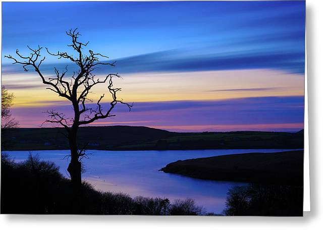 Greeting Card featuring the photograph The Naked Tree At Sunrise by Semmick Photo