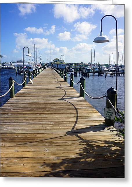The Naples City Dock Greeting Card by Robb Stan