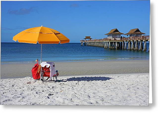 The Naples Pier Greeting Card by Robb Stan