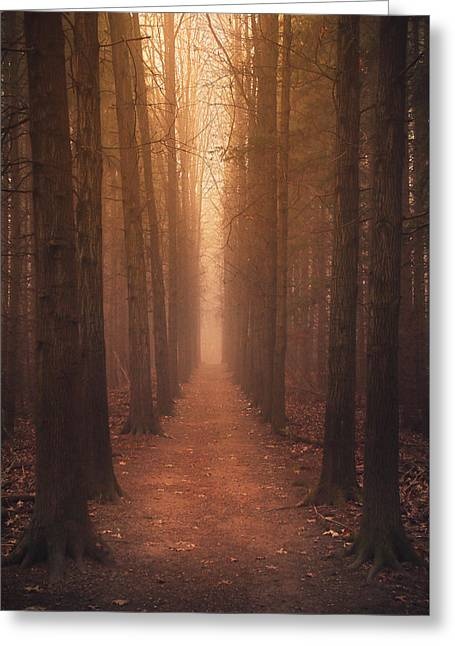 The Narrow Path Greeting Card by Rob Blair