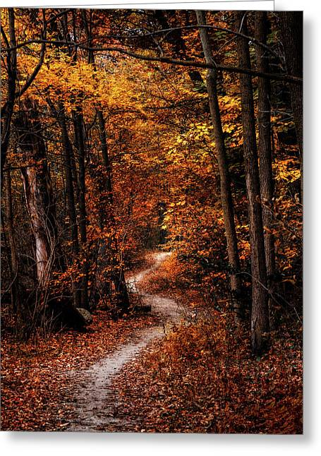 The Narrow Path Greeting Card by Scott Norris