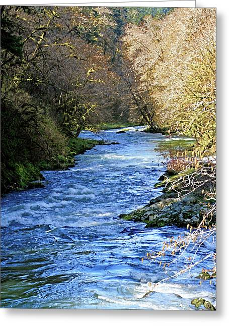 The Nestucca River Greeting Card by Margaret Hood