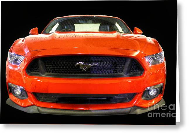 The New Mustang Greeting Card by Vicki Spindler