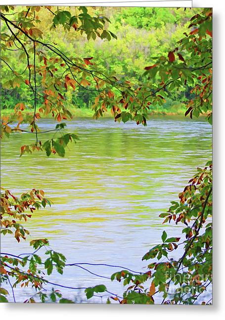 The New River And Autumn Leaves Greeting Card