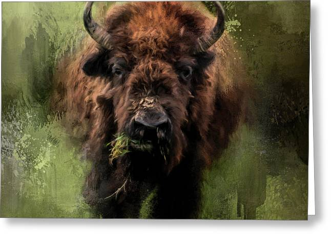 The Nibbler Bison Art By Jai Johnson Greeting Card by Jai Johnson