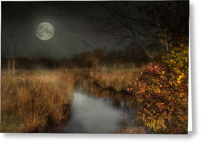 The Night Before Greeting Card by Robin-lee Vieira