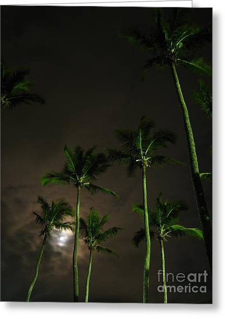 The Night The Fullest Moon I Greeting Card by Alejandro Mahias