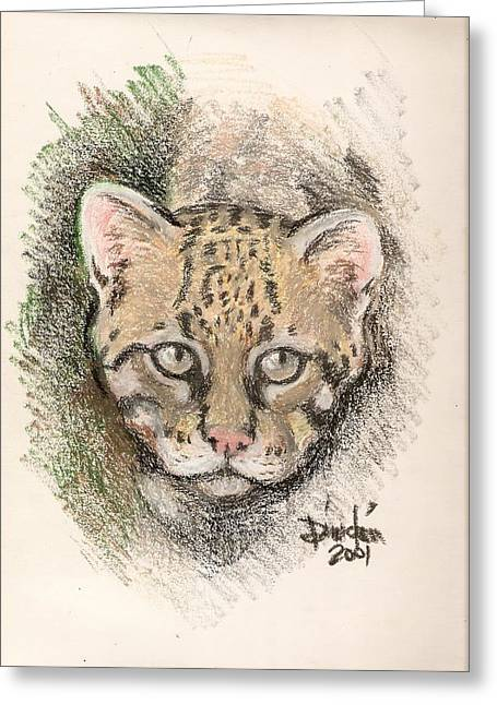 The Ocelot Greeting Card by Dindin Coscolluela